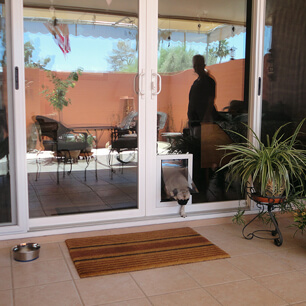 Pet Doors Desert King Windows